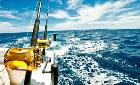 Kona Hawaii Fishing | Kona Fishing Charters from Sea Dancer | Kona Fishing Guide | Scoop.it