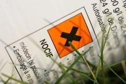 VICTOIRE: le glyphosate, principe actif du célèbre RoundUp, reconnu cancérigène par le CIRC! | Toxique, soyons vigilant ! | Scoop.it