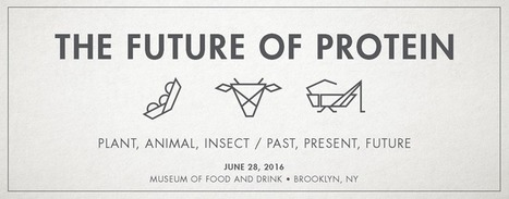 Dinner Series | Entomophagy: Edible Insects and the Future of Food | Scoop.it
