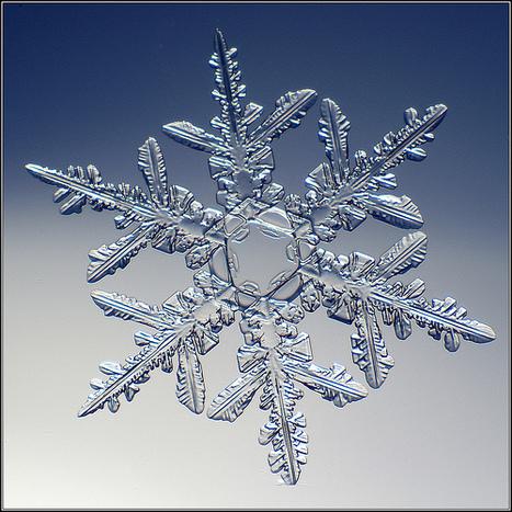 Snowflakes Photography Inspiration ★ Abduzeedo | waouh | Scoop.it