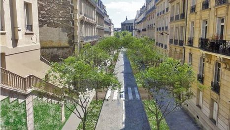 "La Mairie de Paris veut transformer des places de stationnement en minijardins | Macadam"" Seeds 