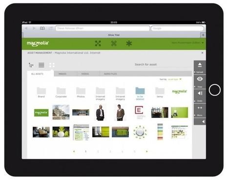 Magnolia: un CMS profesional para usar sin ser un experto | Gestión de contenidos | Scoop.it