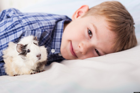 Can Pets Help Kids With Autism? | Neuro-Minded | Scoop.it