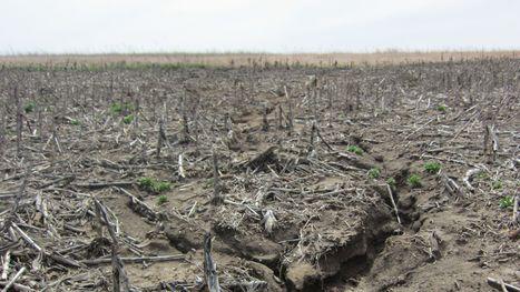 Study: Iowa lost 15 million tons of soil to erosion - DesMoinesRegister.com | Hydraulics | Scoop.it