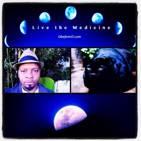 Heal Your Story | Live the Medicine! | Scoop.it