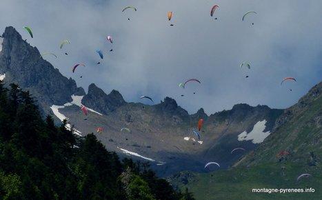 Mais quels sont ces visiteurs sous nos persiennes ?   Vallée d'Aure - Pyrénées   Scoop.it