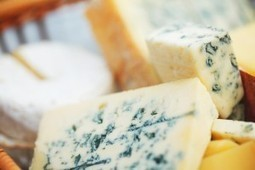 Latest in Anti-Aging: Cheese   New You Magazine   Anti-Aging ...   Trends In Cheese   Scoop.it