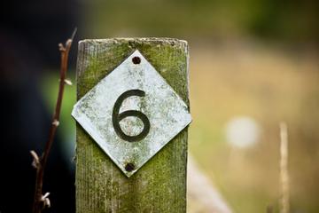 6 Tips for Finding Prospects on LinkedIn | Social Media Magic | Scoop.it