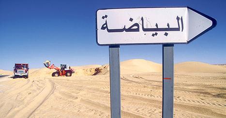 Le Sahara algérien, eldorado de la tomate | Agriculture et planète | Scoop.it