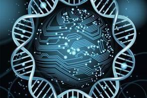 SULSA 2015 - Synthetic Biology Meeting   SULSA   SynBioFromLeukipposInstitute   Scoop.it