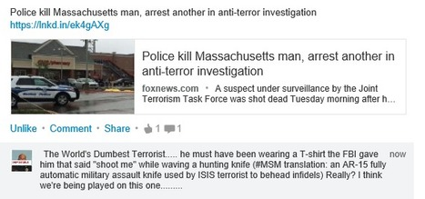 Police kill Massachusetts man, arrest another in anti-terror investigation | Criminal Justice in America | Scoop.it