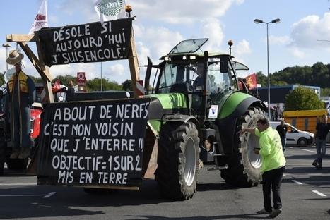 Colère agricole : plus de 1500 tracteurs font route vers Paris ce jeudi matin   Agriculture en Dordogne   Scoop.it