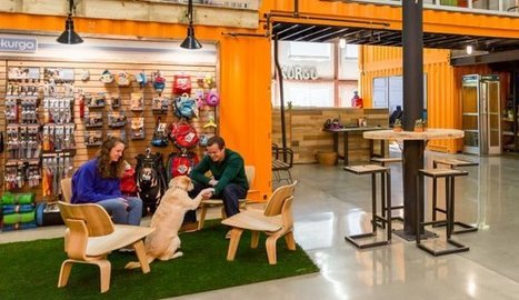 Inside the World's Most Dog-Friendly Office | Edu's stuff | Scoop.it