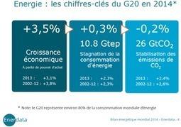 Les chiffres 2014 de l'énergie du G20 | Daily Energy News | Scoop.it