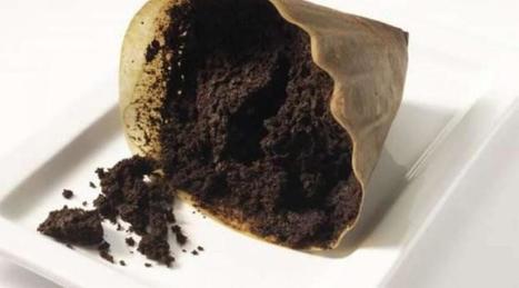 Découvrez les bienfaits insoupçonnés du marc de café | Santé et Soins | Scoop.it