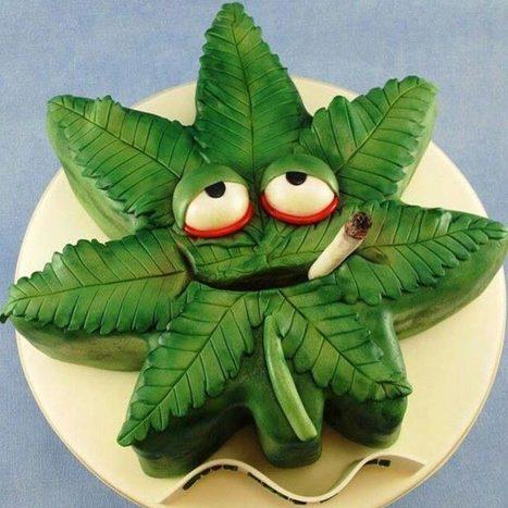 Un pâtissier peut-il être licencié pour avoir représenté une feuille de cannabis sur une galette des rois ?   Médias et drogues   Scoop.it