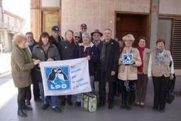 Trafic et détention de 700 grives, audience du prévenu au Tribunal de Grande Instance de Draguignan - LPO PACA - Ligue pour la Protection des Oiseaux   Ces animaux sauvages ou domestiques maltraités par l'homme   Scoop.it