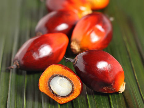Monsanto, Natura taste the true cost of palm oil and soybeans | Food & Sustainability | Scoop.it