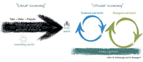 NoveTerra » l'Economie Bleue (ou circulaire), c'est maintenant ! | Economie Circulaire et Territoire | Scoop.it