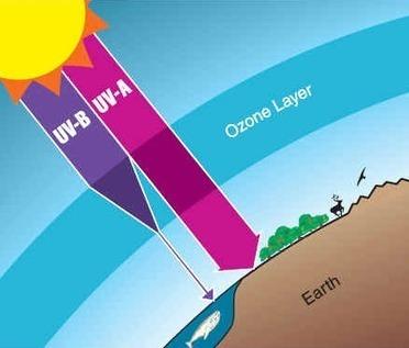 La capa de ozono | CalentamientoGlobal | Scoop.it