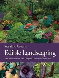Edible Landscaping   Outside Ideas   Scoop.it