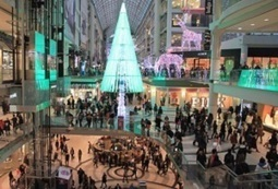 Black Friday: The Longest Shopping Day Of The Year? | culture traits | Scoop.it