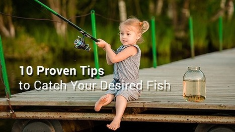 Find Fishing Spots Near your Location: 10 Proven Tips to Catch Your Desired Fish | Fishing Spot App | Scoop.it