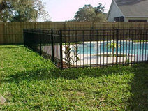 Tampa pool fences   chain link fence   Scoop.it
