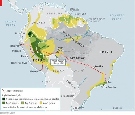 A railroad that crosses the Amazon could be an infeasible, expensive dream for Peru | Rainforest EXPLORER:  News & Notes | Scoop.it