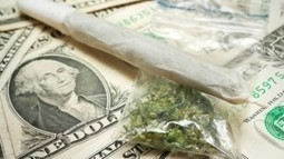 Marijuana Legalization Violates US Gov Obligation to International Treaties | MN News Hound | Scoop.it