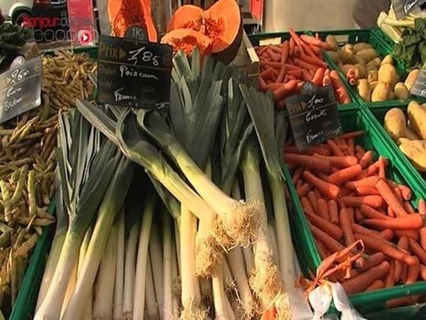 Alimentation bio : quel intérêt pour la santé ? (Vidéo) Allodocteurs.fr | Gastronomie et alimentation pour la santé | Scoop.it