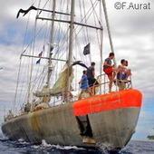 Une grande étude cartographie la biodiversité marine - CORDIS Nouvelles | Biodiversité NC | Scoop.it