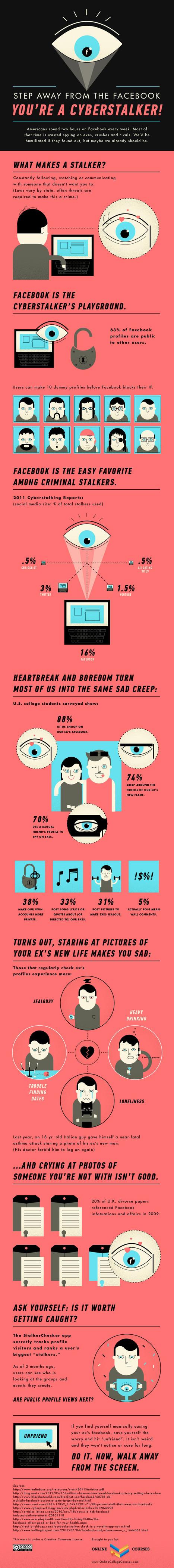 Infografía sobre el cyberacoso, una actividad indeseable | Cosas que interesan...a cualquier edad. | Scoop.it