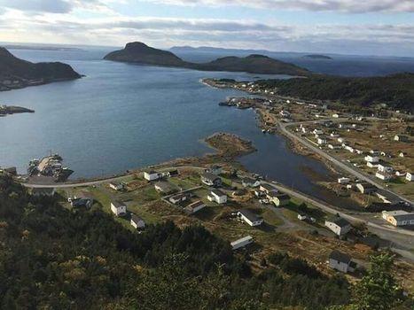 Salmon Federation slams aquaculture decision | Aquaculture Directory | Aquaculture Directory | Scoop.it