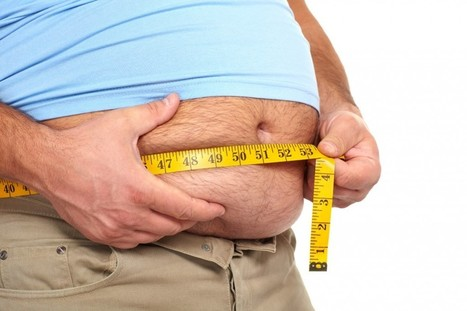 Obesity: Treatments and the Cost of Obesity Surgery in India - LERA Blog | Weight Loss Surgery | Scoop.it