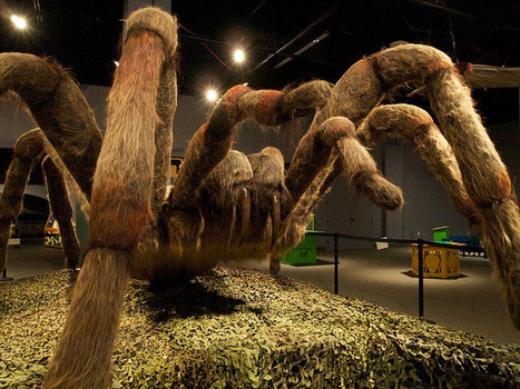 Houston, Texas: The Health Museum photo, picture, image | Medical Museums Worldwide Discovery | Scoop.it