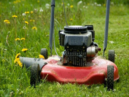 Experience T.R.H Property Maintenance's professional lawn care service. | T.R.H Property Maintenance | Scoop.it