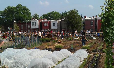 Common Good City Farm Brings D.C. Community Together | Participation citoyenne | Scoop.it