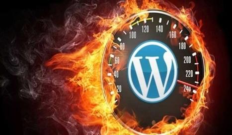 Hosting Wordpress | Come scegliere il migliore! | Web Hosting | Scoop.it