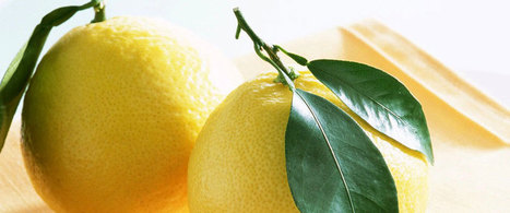 How to Be Healthy Life | How to Be Healthy Life | Scoop.it