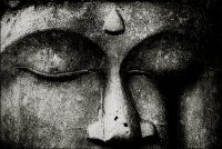 Business Bodhisattva | Integral Business | Scoop.it