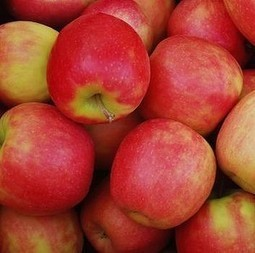 Coles in 'fresh' trouble again over Tasmanian pink lady apple claims | Business Studies: BROB | Scoop.it