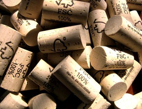 Uso da rolha de cortiça aumenta 30% nas caves mundiais   Wired Wines of Alentejo   Scoop.it