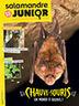 La Salamandre Junior, n° 102 | Revue de presse au CDI de Jeanne d'Arc à Saint Maur des Fossés | Scoop.it