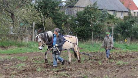 Une agriculture qui respecte la terre et les humains | Questions de développement ... | Scoop.it