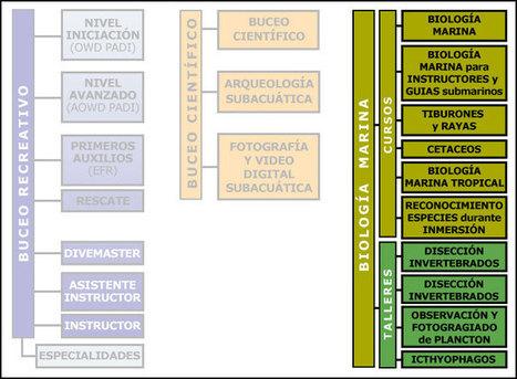 Biología marina | Biología marina y sus curiosidades | Scoop.it