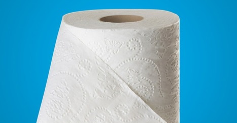 Cheetos Uses Google Street View to Toilet Paper Your House   Guerrilla Marketing   Scoop.it
