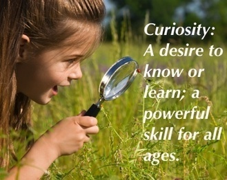 Curiosity & Storytelling: Asking the Right Questions to Motivate, Manage & Lead | Just Story It! Biz Storytelling | Scoop.it