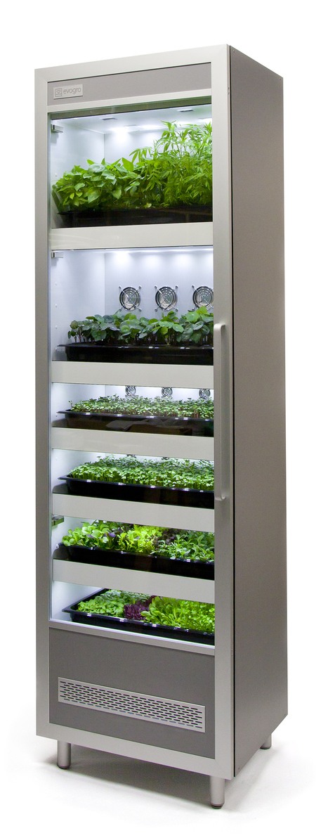 Evogro | Evogro Plant Growing System | Transición | Scoop.it