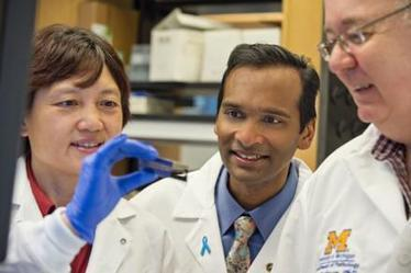 What drives advanced prostate cancer? New study describes genomic landscape   DNA & RNA Research   Scoop.it